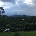 La Anita Rainforest Ranch Photo