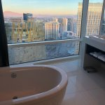 Amazing tub with a view