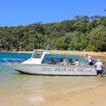 صورة فوتوغرافية لـ Sydney Harbour Boat Tours