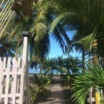 Camino a sentir el caribe