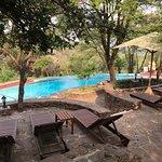 Photo de Serengeti Serena Safari Lodge