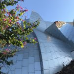 Frank Gehry's Walt Disney Concert Hall in downtown LA