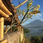 The view of Mount Agung from the front garden