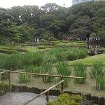 East Gardens