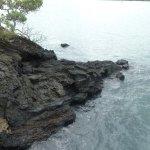 Volcanic Rock at shoreline by Islington Bay Wharf