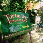 Photo of Turtle Bay Bakery & Cafe