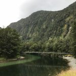 Photo of Milford Track