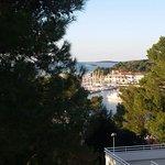 Hotel Pineta Foto