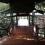 Photo of Ngorongoro Serena Safari Lodge