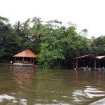 Photo of Pachira Lodge