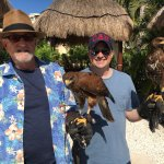 Harris Hawks keep the sea gulls away lest they foul the grounds. The handlers let us hold them