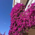 Photo of Robinson Club Agadir