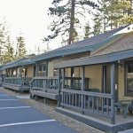 Forest side cabins
