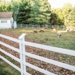Ash Mill Farm Bed and Breakfast Photo
