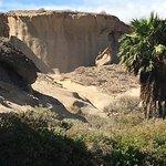 Photo of Reserva Ambiental de San Blas