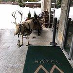 Bild från Hotel Maribel