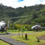 Experience an intimate landing within the Hana Rainforest