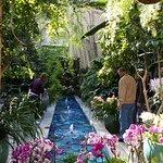 The photogenic US Botanic Gardens