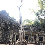 Photo of Angkor Archaeological Park
