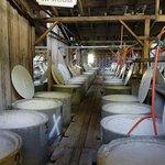 Olive vats