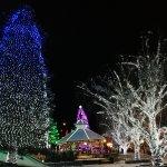 More Christmas lighting
