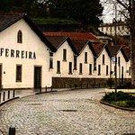 Photo of Ferreira Cellars