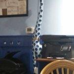 Blue Giraffe Mascot ?, How it got its name ?