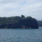 The Sydney Ferry