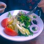 huge side salad, very fresh