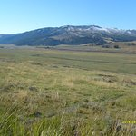Lamar Valley - Yellowstone National Park