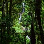 Photo of Kaiate Falls