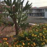 Coronado Motor Hotel Yuma Foto