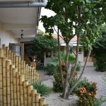 Foto de Camacuri Apartments Aruba
