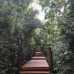 Photo of Loi Suites Iguazu