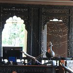 A old Indian haveli window