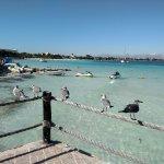 Fiesta Americana Villas Cancun Foto