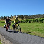 Riding the fantastic Murray to mountains Rail Trail