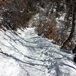 Trail to the falls overlook is paved but can be snowy / icy.
