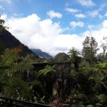 Photo of Rainforest Retreat