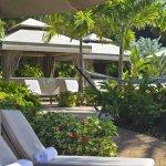 Bild från The Westin St. John Resort Villas