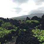 Photo de Wai'anapanapa State Park
