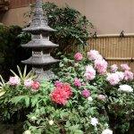 Photo of Yuushien Garden