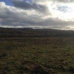 Forest Holidays Keldy, North Yorkshire