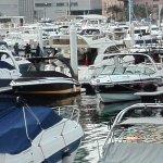 Photo de Dubai Marina Yacht Club
