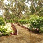 Next Paradise Boutique Resort Foto