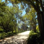 Foto de Williamstown Botanic Gardens