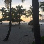 Foto de Palm Island Resort & Spa