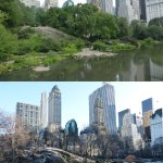 Central Park Summer 2014 to Winter 2017/18
