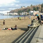 Alki beach waterfront on a sunny January day