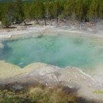 Emerald Spring - Norris Geyser Basin - Yellowstone NP
